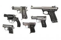 Fegyvercsalád